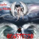 Los Ángeles Videncia y Tarot en vivo 806313728 Los Ángeles te ayudan 806313728