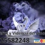 Tarot y Videncia del Amor 925582248