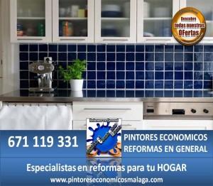 PINTORES ECONOMICOS REFORMAS EN GENERAL