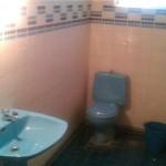 cuarto de baño con inodoro, labavo, ducha