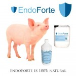EndoForte probioticos para animales