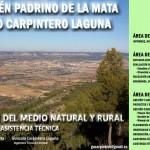 Áreas de Actividad Profesional: Consultoría Ambiental