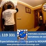 Pintura, desconches, arreglos, proteccion todo por 390 euros