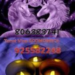 """Tarot y Videncia ECONOMICA 806383741, Tarot y Videncia Unicornios del Amor"""" 806383741"""