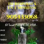 Tarot Express ECONOMICO 905433068 Los Sueños, respuestas rápidas  905433068.