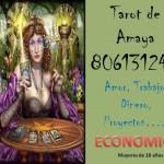 """Tarot de Amaya 806131248 """"Déjate ayudar, Yo te escucho""""806131248"""
