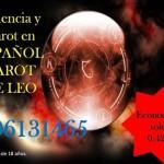 """TAROT  Y VIDENCIA DE LEO 806131465 """"Leo luchara a tu lado para ayudarte a conseguir tus propósitos"""""""