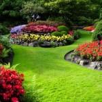 cuidado jardines en madrid