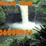 Tarot ECONOMICO de Mina 806099971 dispuesto para atenderte 806099971